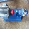 厂家直销不锈钢NYP高粘度转子泵内齿合转子泵